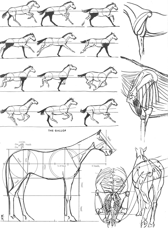 howtodraw11_p38