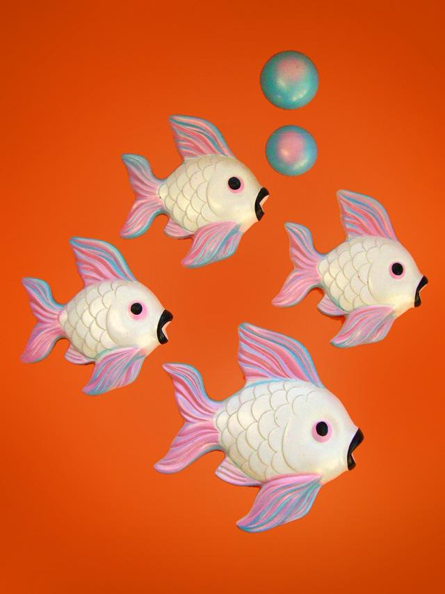wallfish01