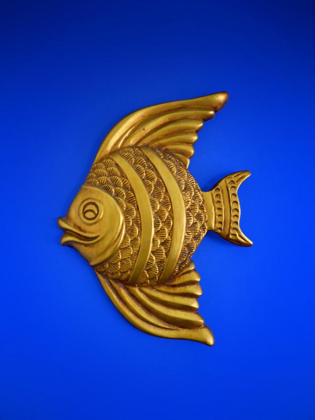 wallfish06