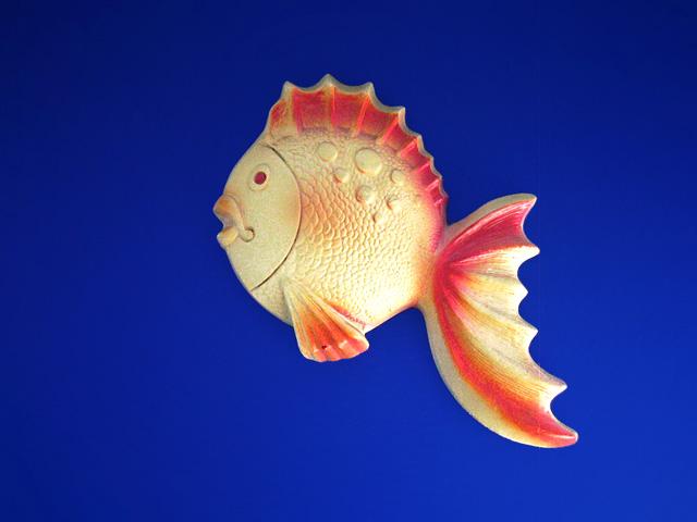 wallfish08